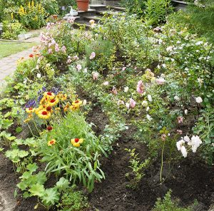 Bepflanzung von Beeten