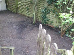 Garten-Entrümpelung (nachher)
