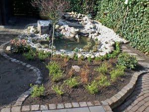 Garten-Teich nachher